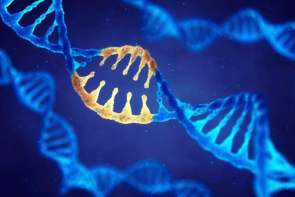 baskın gen