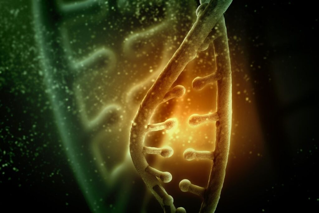 çekinik gen