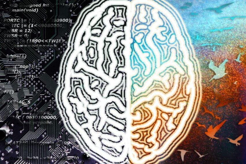sağ ve sol beyin